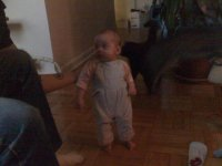 Standing mostly on her own.jpg