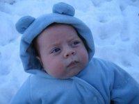 In the snow 2.jpg